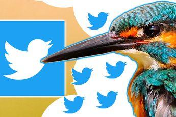 'Twitter werkt aan betaald abonnement, dit weten we al'