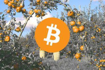 'Intrinsieke waarde Bitcoin gelijk aan marktprijs', aldus analist JP Morgan