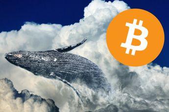 'Bitcoin whales kopen ruim 37.000 BTC op'