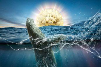 Deze whale kocht in één week voor $241 miljoen aan Bitcoin (BTC)