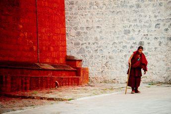 Boeddhisme | Je kan meer voldoening halen uit goed om je heen kijken