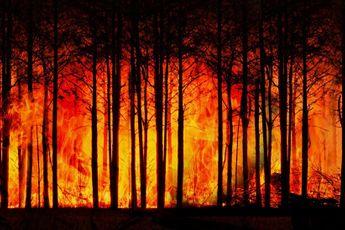 Gigantische bosbranden teisteren Siberië; weersextremen nemen overal in de wereld toe