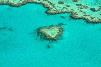 Unesco wil Great Barrier Reef op lijst bedreigd erfgoed plaatsen vanwege klimaatverandering