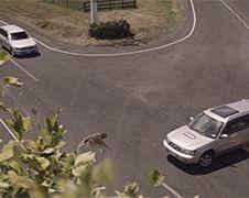 Keiharde anti snel rijden commercial uit Nieuw-Zeeland