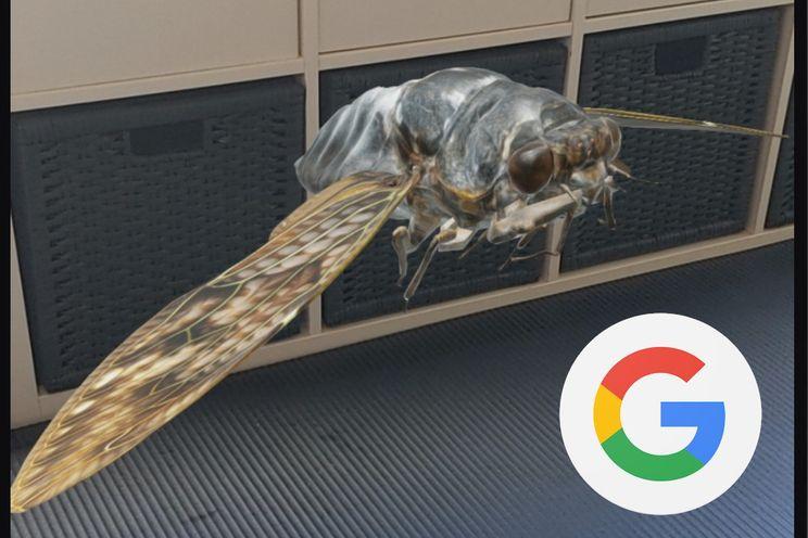 3D-dieren op je telefoon bekijken, dit zijn de 23 nieuwe insecten