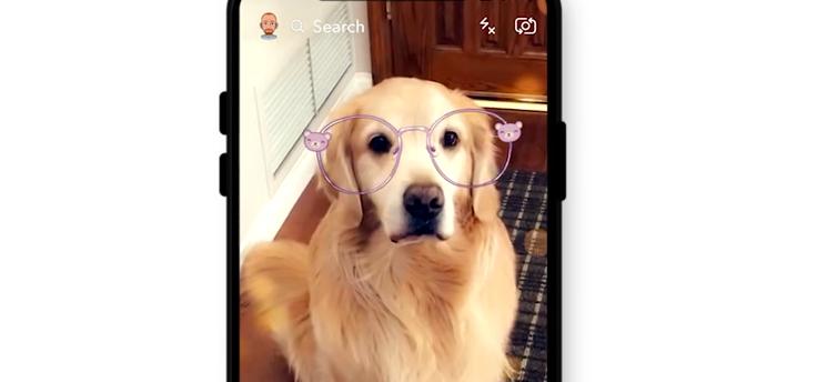 Snapchat lenzen werken nu ook bij je hond