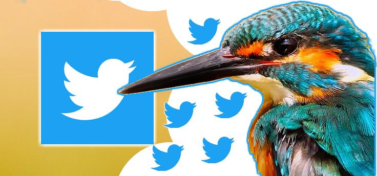 Twitter: beperk wie mag reageren en bekijk voortaan 'quote tweets'