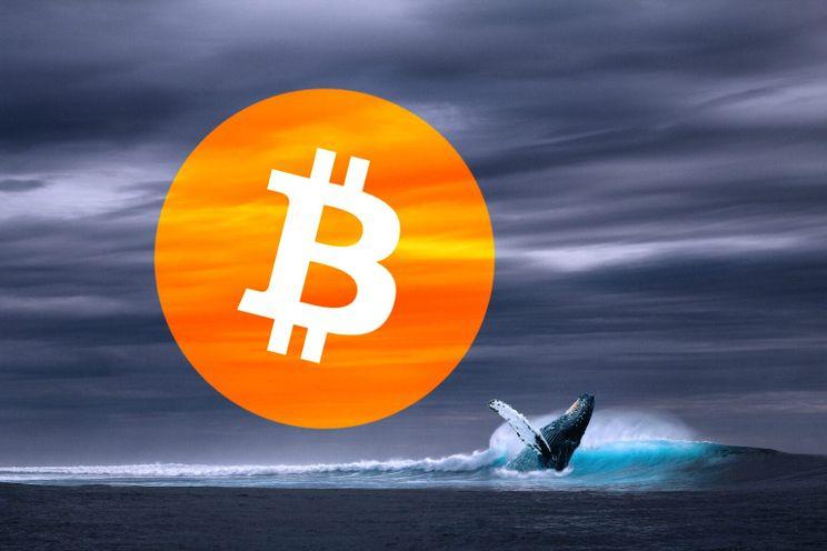 Bitcoin ter waarde van $30 miljoen komt weer tot leven in 9 jaar oude wallet