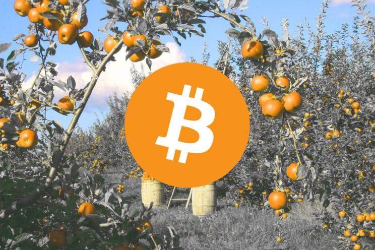 KuCoin bevestigt komst van nieuwe bitcoin mining pool