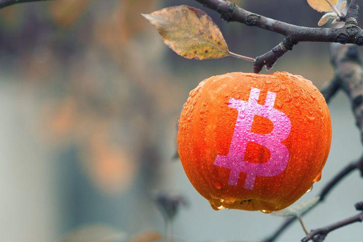 4 statistieken die vandaag belangrijk zijn voor de bitcoin prijs