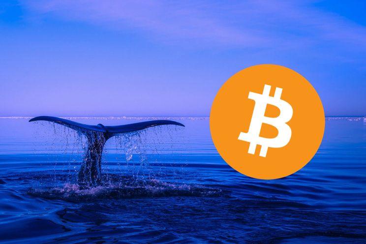 Miners, whales en beurzen: 3 trends in de huidige Bitcoin markt