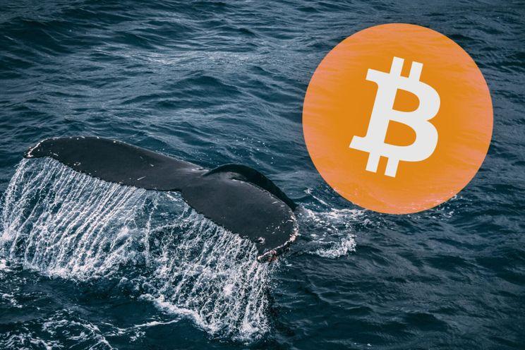 Bitcoin whale veroorzaakt korte koersdaling van 8% op Bitstamp