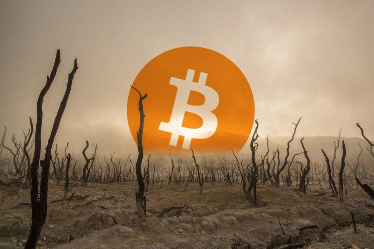 Miljonair die investeerders in Bitcoin ooit 'sukkels' noemde toont interesse